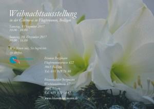 Flyer Weihnachtsausstellung Bolligen 2017 - Blumen Bergmann - Rückseite