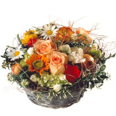 Frühlingserwachen - Blumen Bergmann