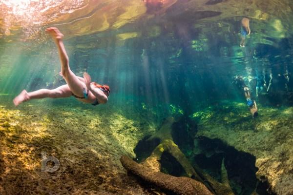 Swimming Lazy River Florida Amazing Natural Springs Blurmedia Danko