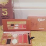Shine On Fake Bake palette