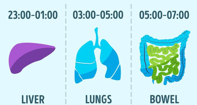 5 Weird Habits That Can Make You Live Twice As Long 1