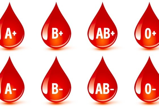 Scientists Advise Eating According To The Blood Type 60