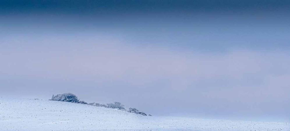 Stephen-S-Winter-Outlook