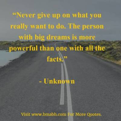 Never Give Up On What You Really Want To Do