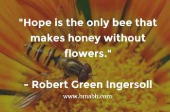 Bees Quotes And Sayings