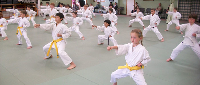 - Children's martial arts