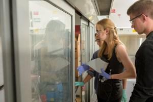 BMEG-Spencer_Lab-Students_Working-051116