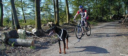Aramis Bike