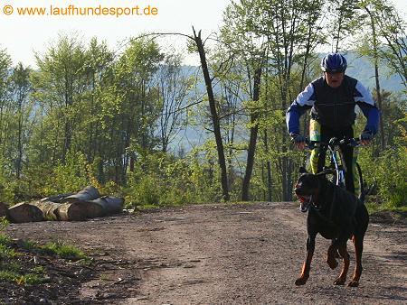 LUZL - Laufen Unter ZugLast (2/6)