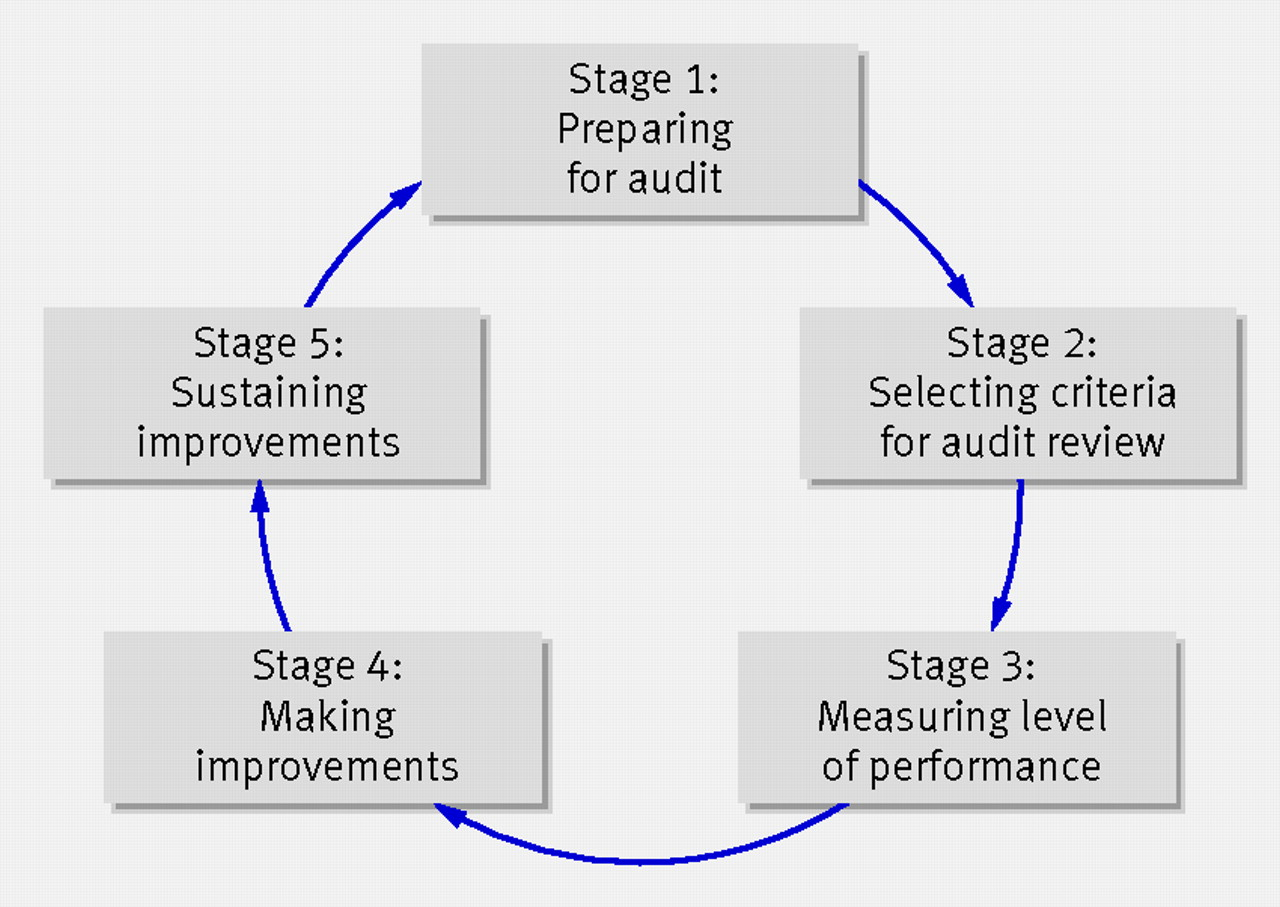 Audit How To Do It In Practice
