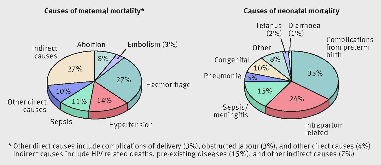 Image result for maternal mortality rate GB