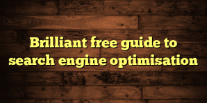 Brilliant free guide to search engine optimisation