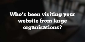 Who's been visiting your website from large organisations?
