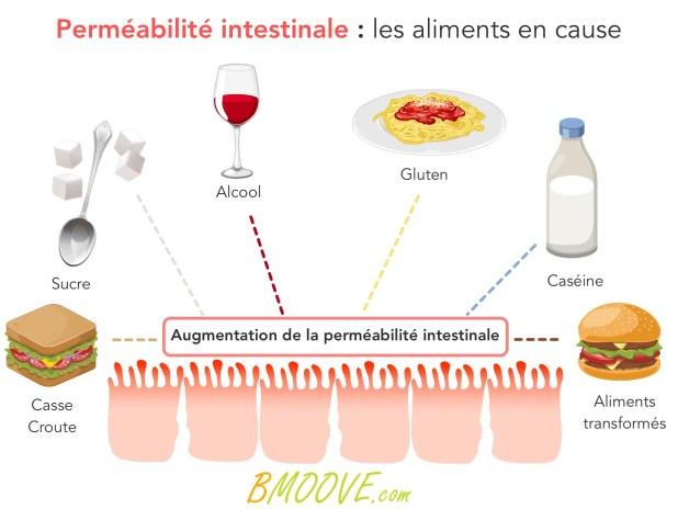 Perméabilité intestinale et hyperperméabilité intestinale 10