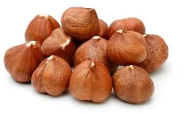 Les noisettes : source de protéines végétales