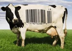 L'industrie de la viande