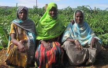 Israel ajuda agricultores na África