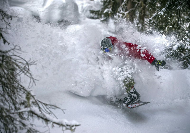 Snowboarder in powder snow