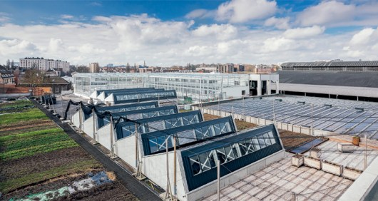 Ferme Abattoir: an urban farm that simultaneously produces fish and  vegetables