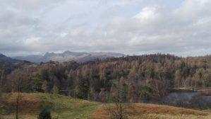 Tarn Hows Lake District UK