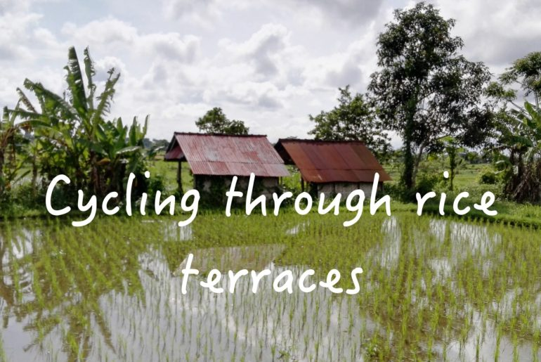 Cycling through rice terraces