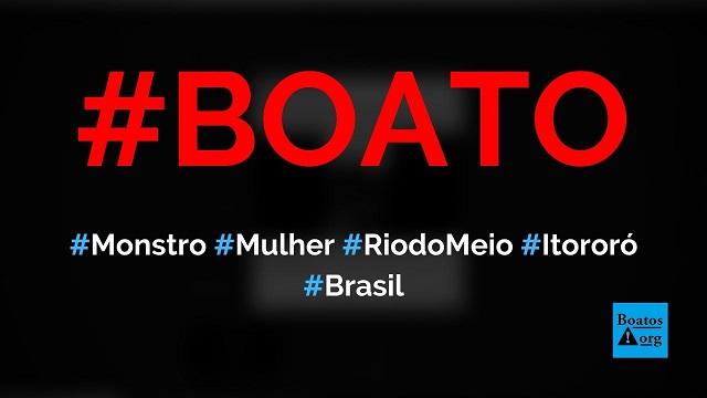 Monstro em formato de mulher aparece entre Rio do Meio e Itororó (Bahia), diz boato (Foto: Reprodução/Facebook)
