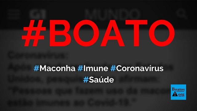 Pessoas que usam maconha estão imunes ao novo coronavírus (Covid-19), diz boato (Foto: Reprodução/Facebook)