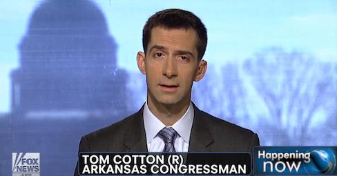 tom-cotton