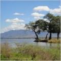 bobil zambia