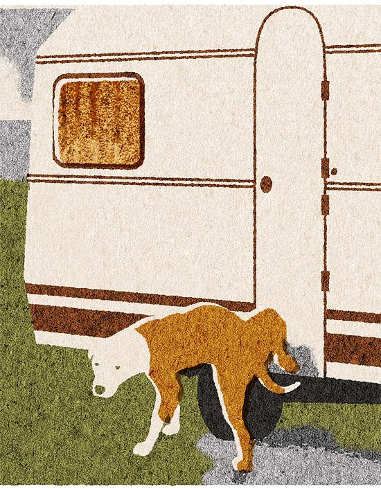 caravan-hond2