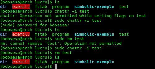 chattr-atribut-immutabil