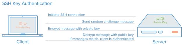 Autentificare chei SSH