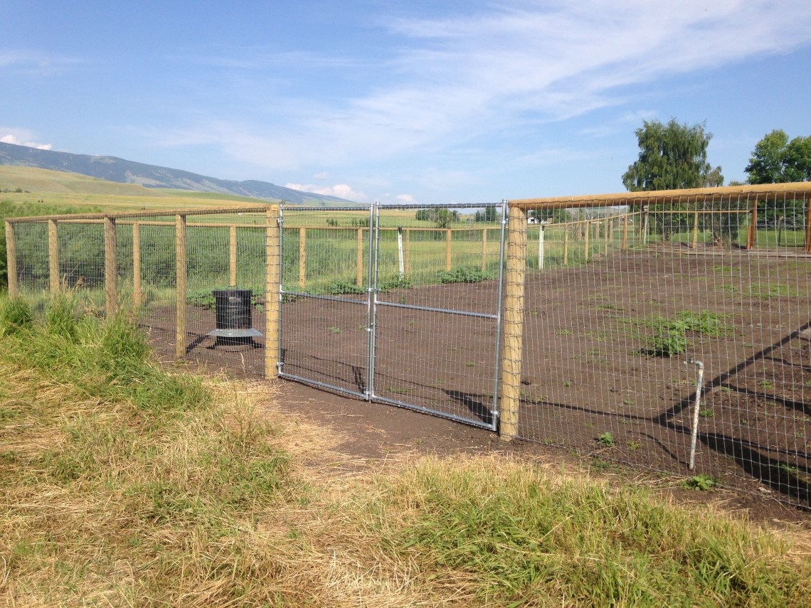Image Result For Electric Fence Installation Company