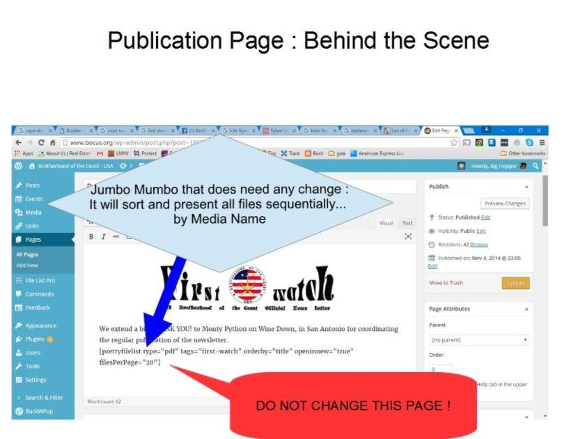 publication3-scene