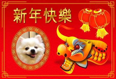 Bodhi Me Chinese New Year 2018 Kobé