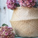 Hydrangeas, baskets and the work of Emily Quiton, Photographer