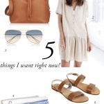 5 things I want right now!