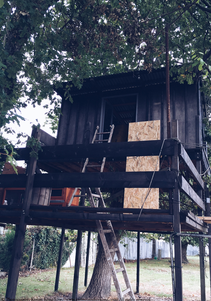 office space in a tree house.