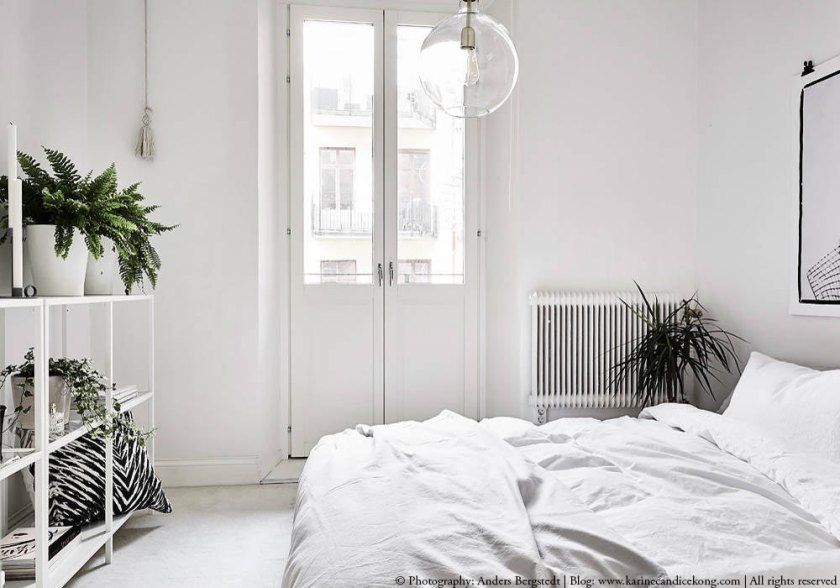 A beautiful white apartment with natural accents