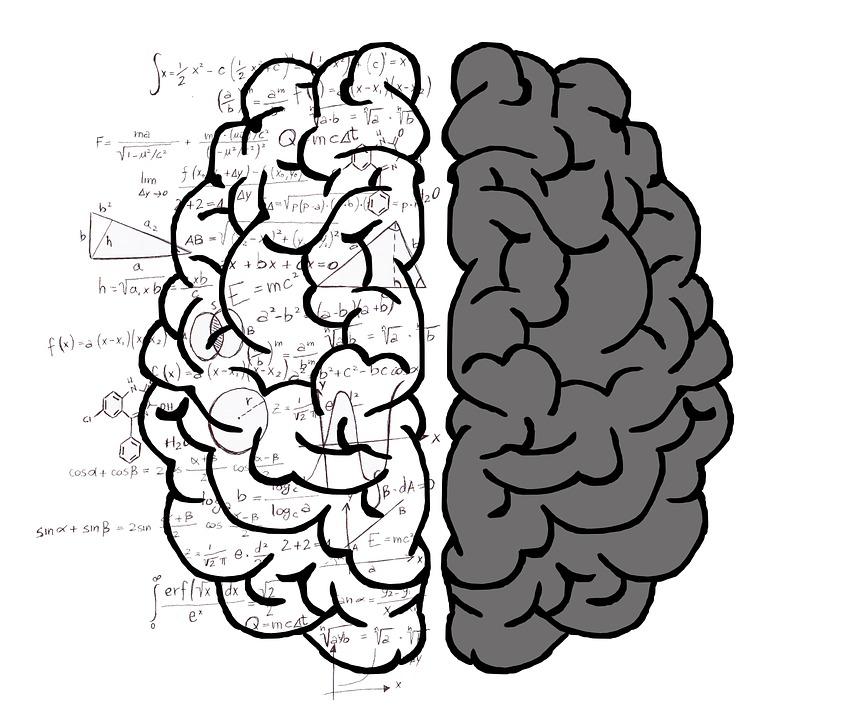 left-brain-rationaity