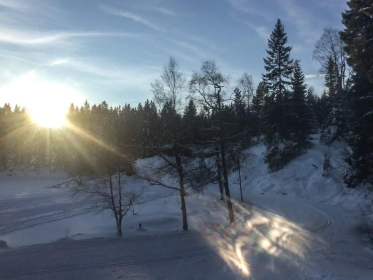 sun-meaningful-life