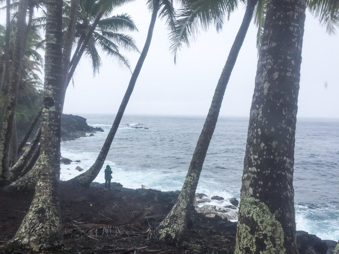 regnskog-kalani-big island-hawaii