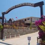 Horse Riding Centre in Turgutreis Turkey