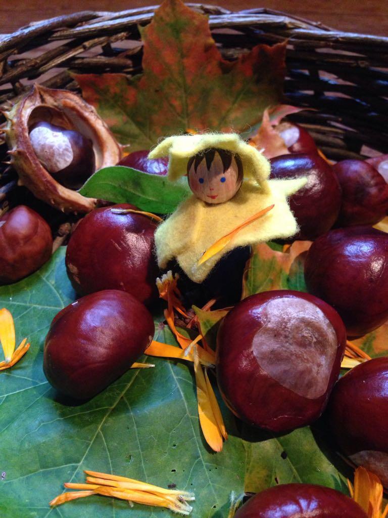 Nachhaltige Herbstidee: Kastanien Wasch- und Spülmittel