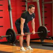 Bent Over Barbell Row