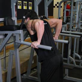 Dips - Versión del tríceps