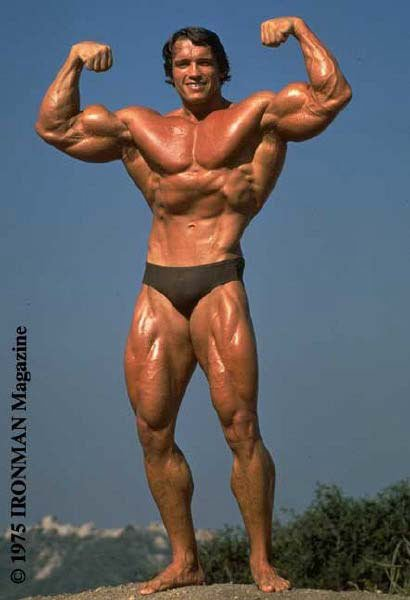 Olympic Champions Bodybuilding