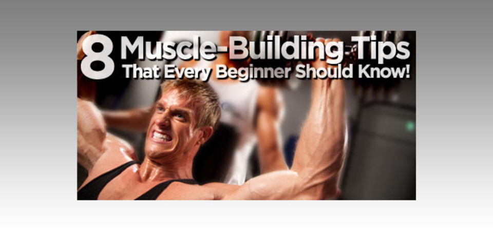 8 Muscle Building Tips That Every Beginner Should Know