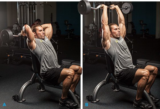 7 Strategies To Target Your Triceps Long Head And Build
