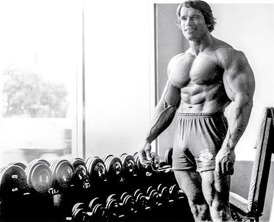 Arnold schwarzenegger the greatest bodybuilder of all time arnold trained shoulders with the same high volume approach he employed with other body parts ensuring that each deltoid head was targeted from different malvernweather Gallery